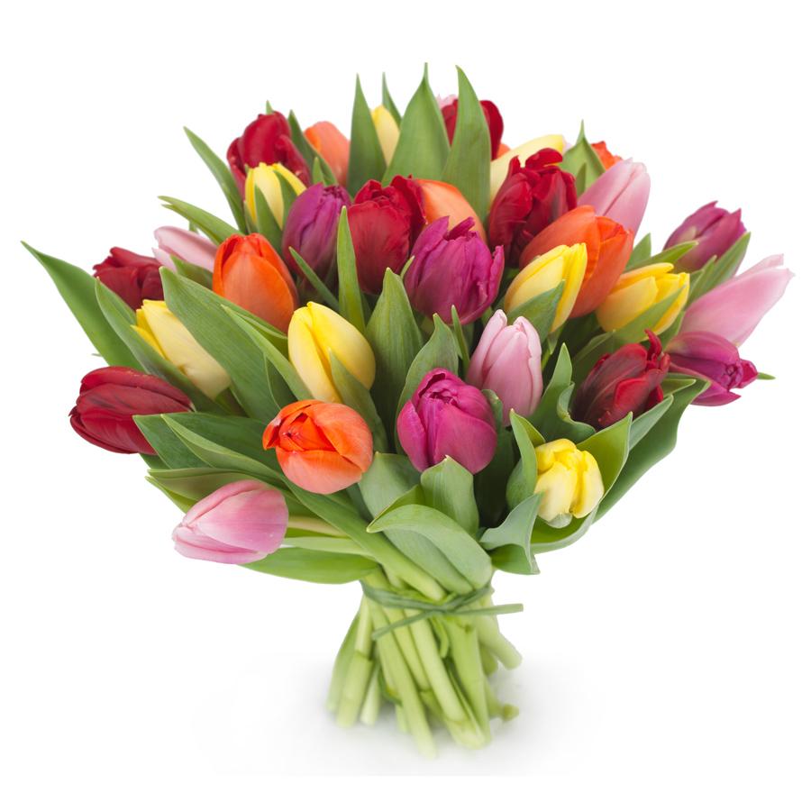 Foto Mazzo Di Fiori Compleanno.Bouquet Di Tulipani Fiori Online Vendita E Consegna Fiori A