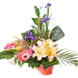 Composizione con gerbere rosa gigli chiari e iris blu