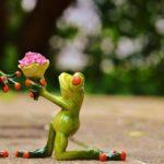 Il mazzo di fiori e il bouquet perfetto da regalare a San Valentino