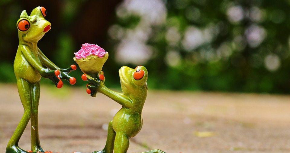 Il Bouquet e Mazzo di Fiori perfetto per San Valentino