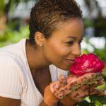 La potatura delle rose: come e quando potare le rose di casa
