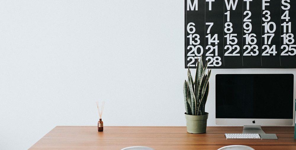 Migliori piante da ufficio ornamentali