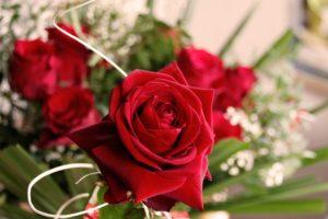 Fiori per San Valentino: 5 migliori fiori da regalare il 14 febbraio