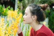 I fiori più profumati da mettere in casa o in giardino