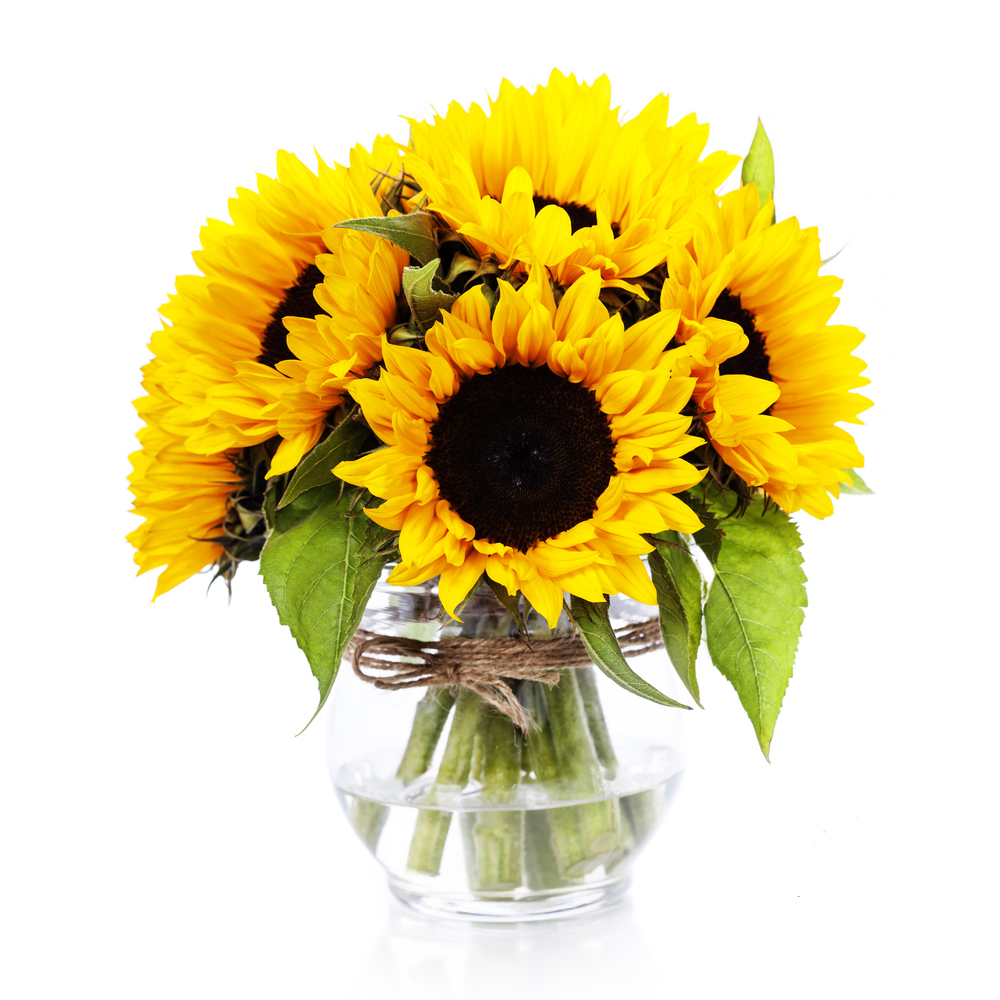 Sunflower And Rose Bouquet Simple