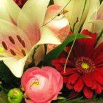 Bouquet con gerbere - FioriOnline
