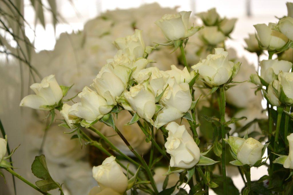 mazzo di rose bianche per comunione - Fiori Online