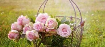 Mazzi di fiori rosa