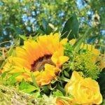Fiori gialli: il loro significato e i bouquet più belli