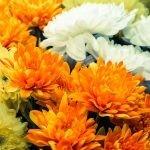 Fiori per la Festa dei morti e composizioni di fiori finti per cimitero